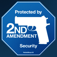 2nd_amendment_security